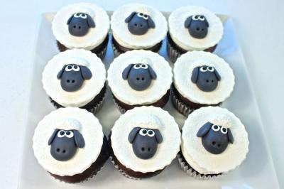 Cute Baby Sheep