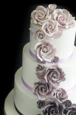 Purple cascading roses