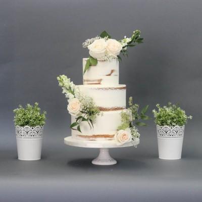 Gâteau moitié nu